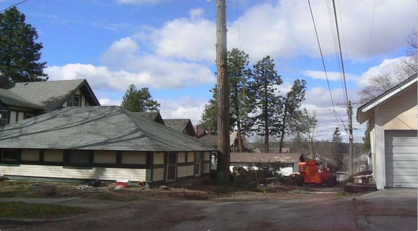 Hazard Tree Removal Spokane Tree Service